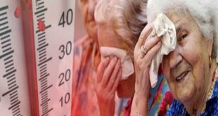 ULSS 7 Pedemontana, emergenza caldo: cosa fare