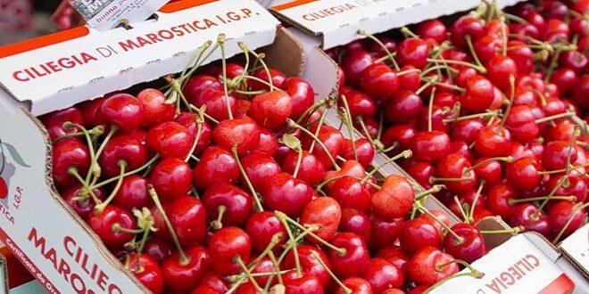Risotto di ciliegie con scaglie di Piave vecchio e vino Raboso