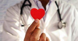 Non dimenticare il tuo cuore