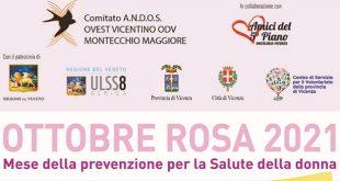 Ottobre Rosa a Vicenza